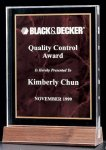 Acrylic Award with a Ruby Marble Center Achievement Award Trophies