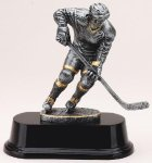 Ice Hockey Hockey Trophy Awards