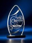 Pinnacle Satin Wired Clear Acrylic Award Sales Awards