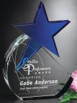 Cerulean Star Sales Awards