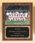 Plaque with Slide-in Photo or Certificate Holder Soccer Trophy Awards