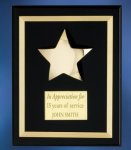 Acrylic Plaque with Brass Star Star Awards